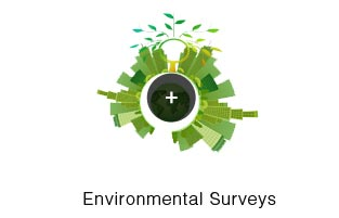 Environmental Surveys